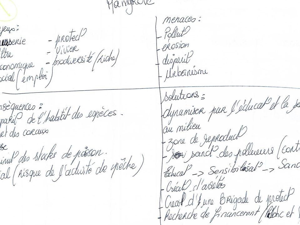 Formation (Re)-découvrez les espaces naturels de la Martinique pour mieux les préserver du 25 au 29 juin 2012 Marion Labeille – Asconit Consultants 8 Liste des principales menaces