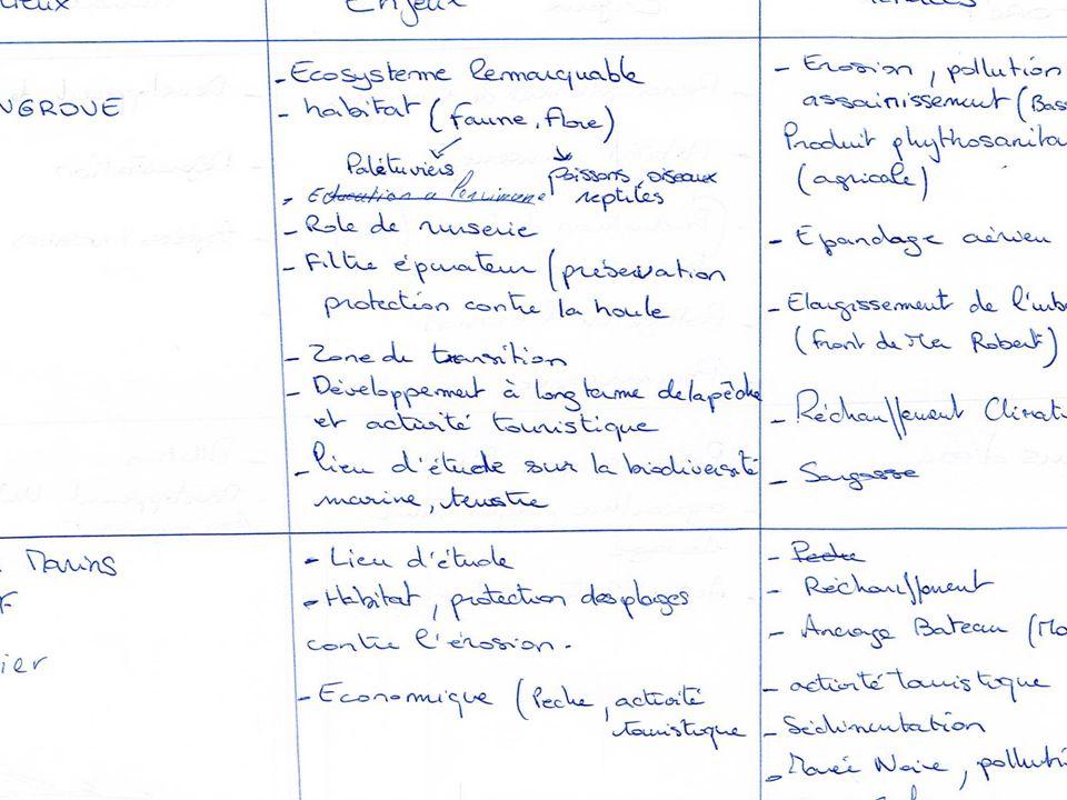 Formation (Re)-découvrez les espaces naturels de la Martinique pour mieux les préserver du 25 au 29 juin 2012 Marion Labeille – Asconit Consultants 10 Liste des principales menaces