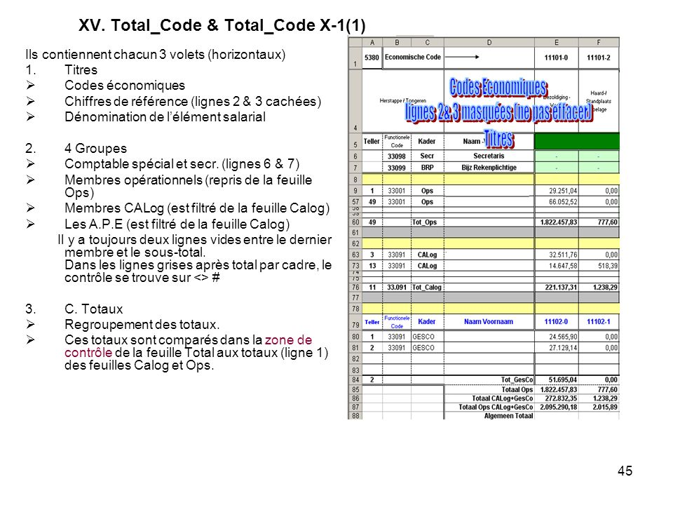 45 XV. Total_Code & Total_Code X-1(1) Ils contiennent chacun 3 volets (horizontaux) 1.Titres Codes économiques Chiffres de référence (lignes 2 & 3 cac