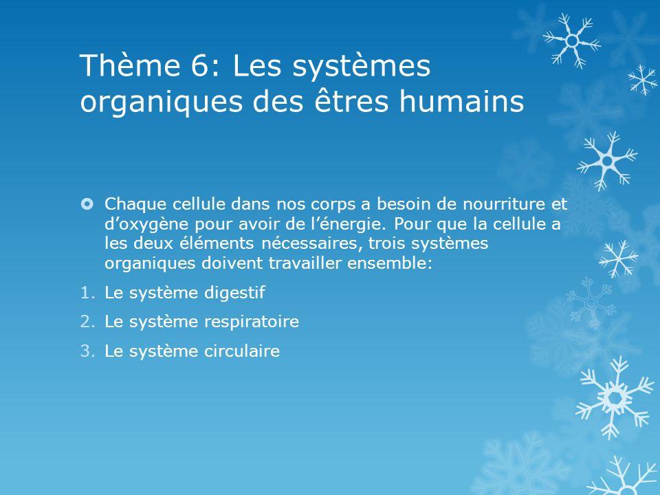 Thème 6: Les systèmes organiques des êtres humains Chaque cellule dans nos corps a besoin de nourriture et doxygène pour avoir de lénergie. Pour que l