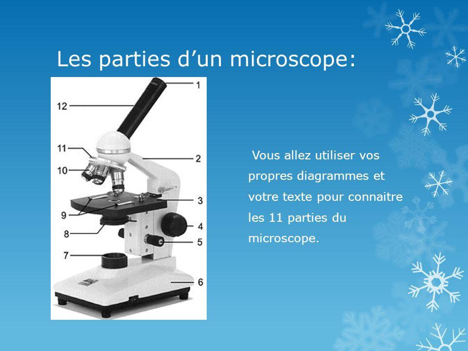 Les parties dun microscope: Vous allez utiliser vos propres diagrammes et votre texte pour connaitre les 11 parties du microscope.