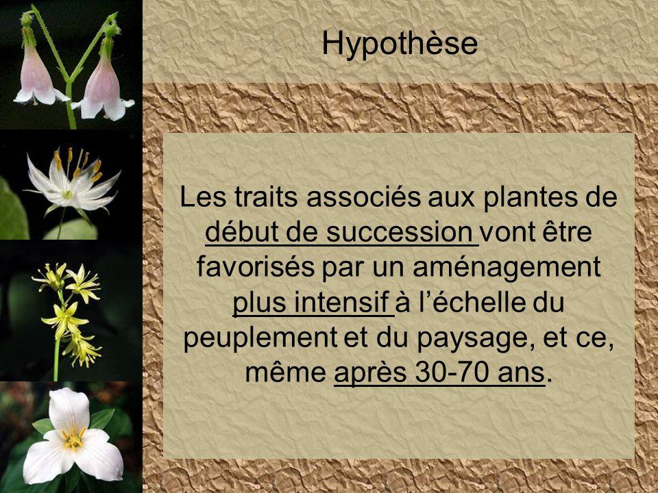 Hypothèse Les traits associés aux plantes de début de succession vont être favorisés par un aménagement plus intensif à léchelle du peuplement et du p