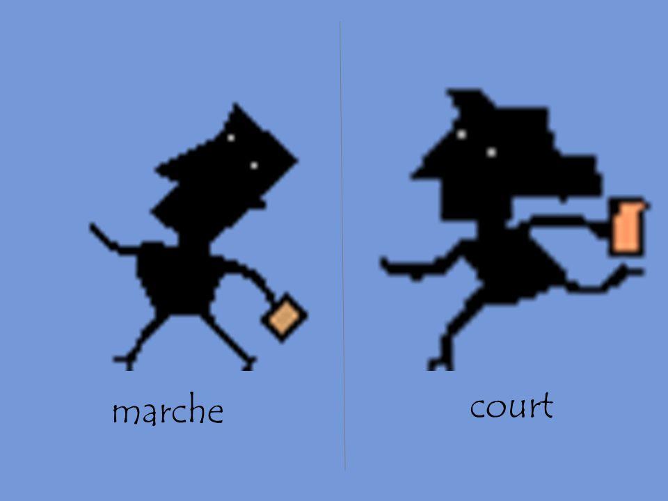 marche court