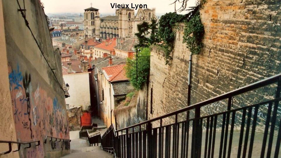 site historique de Lyon (vue depuis Fourvière)