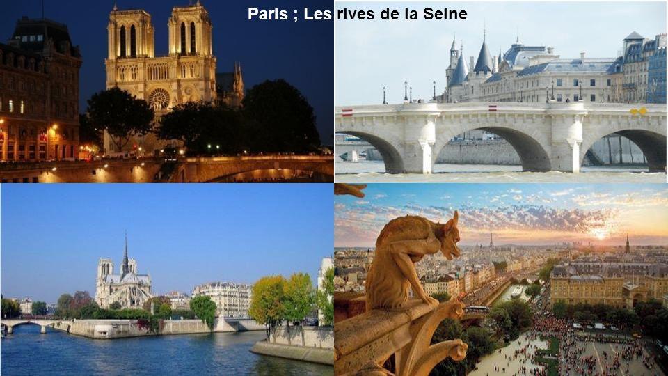 Paris ; Les rives de la Seine
