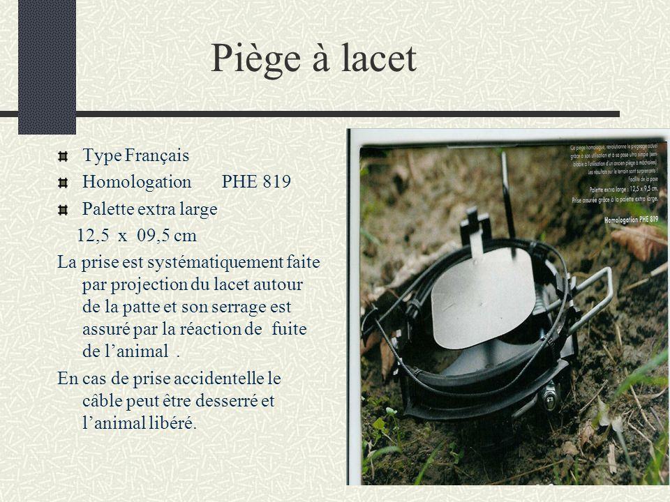 Piège à lacet Type Français Homologation PHE 819 Palette extra large 12,5 x 09,5 cm La prise est systématiquement faite par projection du lacet autour de la patte et son serrage est assuré par la réaction de fuite de lanimal.