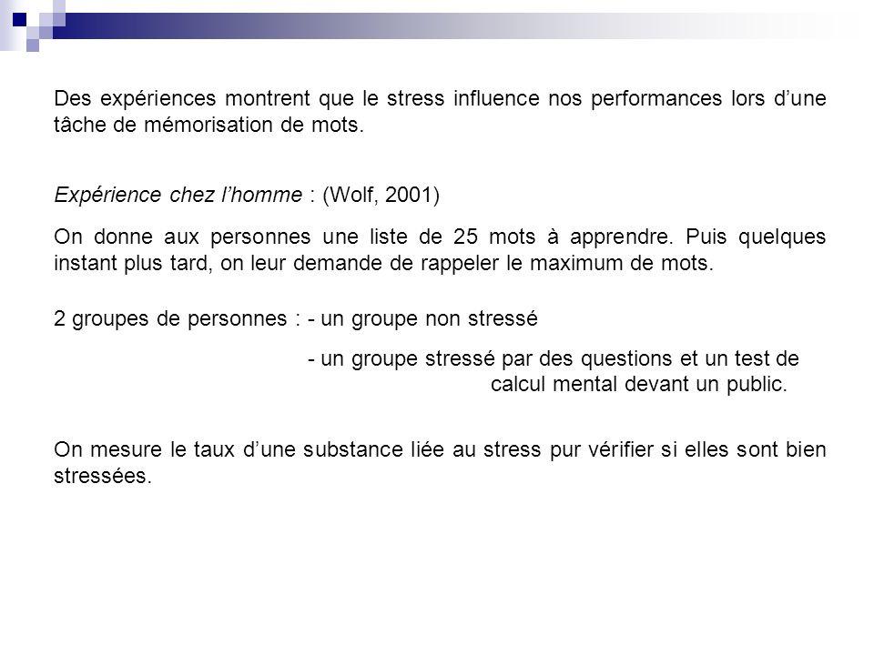 Des expériences montrent que le stress influence nos performances lors dune tâche de mémorisation de mots. Expérience chez lhomme : (Wolf, 2001) On do