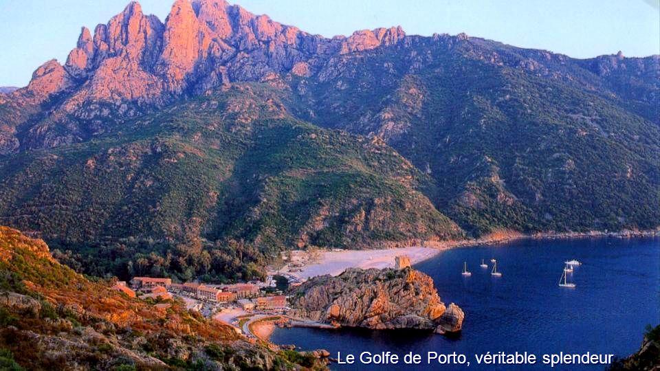 Scandola (Corse)