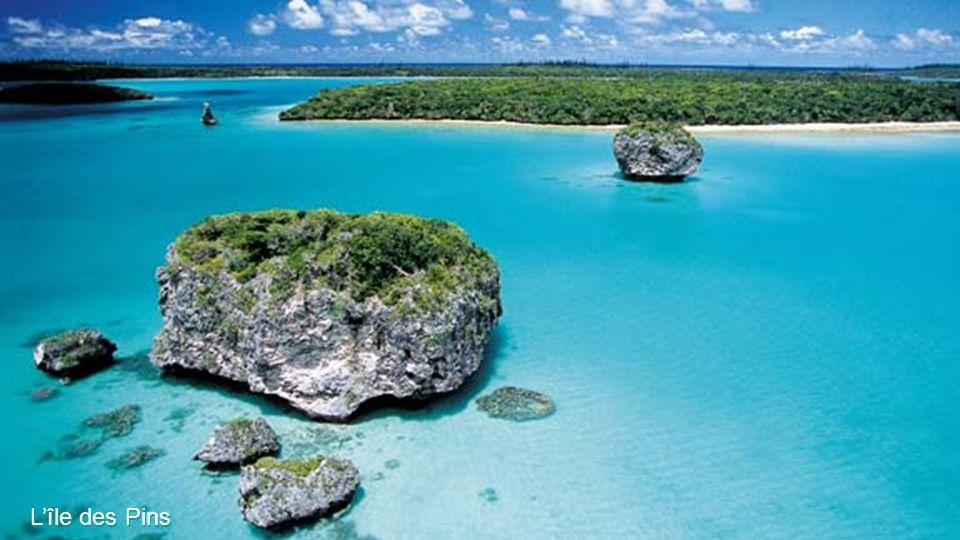 Les lagons de Nouvelle Calédonie - Île dOuvéa