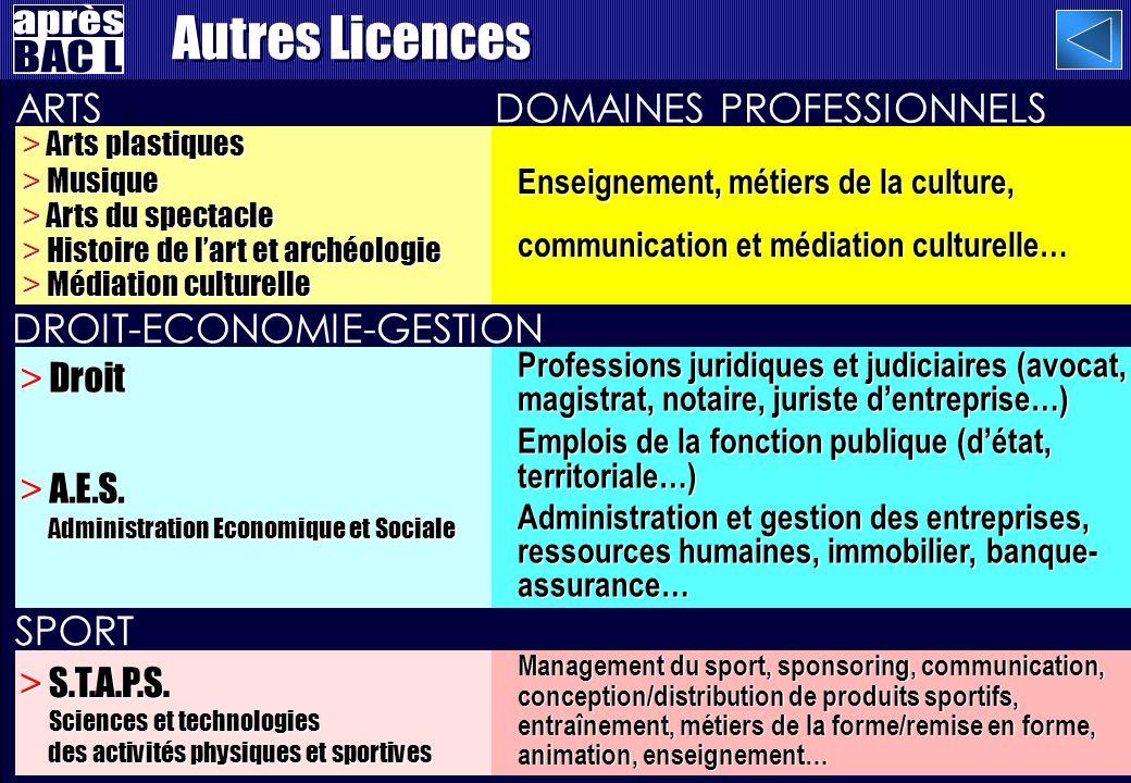 SPORT DOMAINES PROFESSIONNELS > Droit > A.E.S.