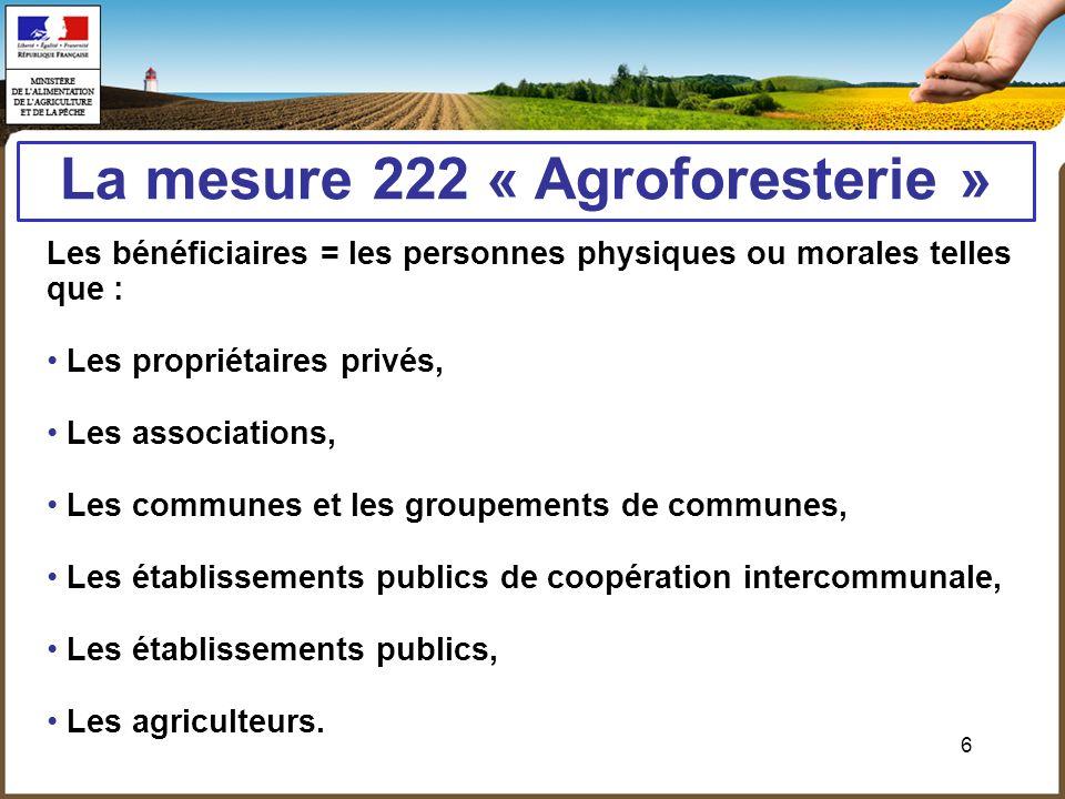 6 La mesure 222 « Agroforesterie » Les bénéficiaires = les personnes physiques ou morales telles que : Les propriétaires privés, Les associations, Les