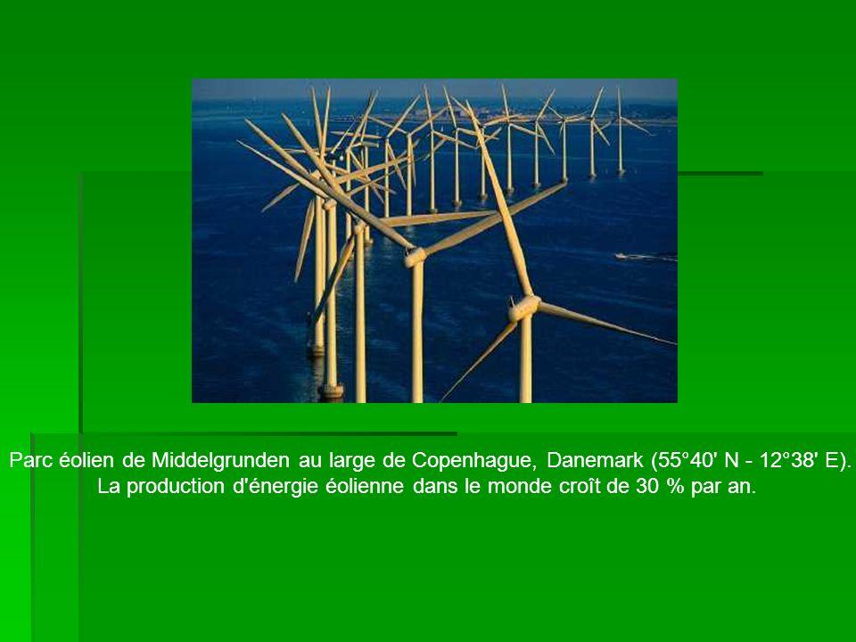 Parc éolien de Middelgrunden au large de Copenhague, Danemark (55°40' N - 12°38' E). La production d'énergie éolienne dans le monde croît de 30 % par