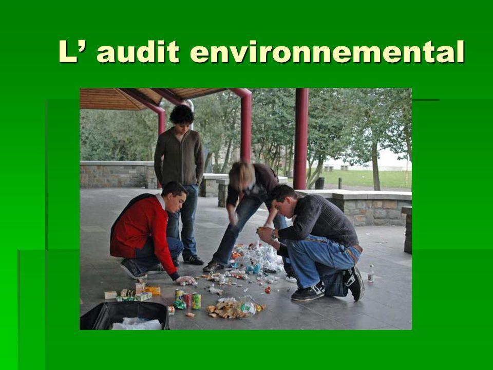 L audit environnemental