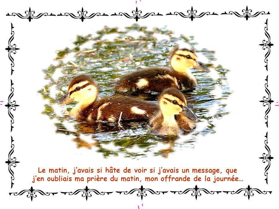 Le matin, javais si hâte de voir si javais un message, que jen oubliais ma prière du matin, mon offrande de la journée…