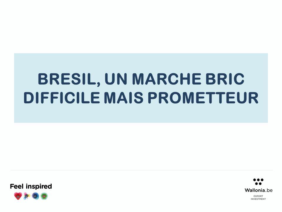 BRESIL, UN MARCHE BRIC DIFFICILE MAIS PROMETTEUR