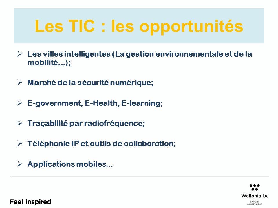 Les TIC : les opportunités Les villes intelligentes (La gestion environnementale et de la mobilité...); Marché de la sécurité numérique; E-government, E-Health, E-learning; Traçabilité par radiofréquence; Téléphonie IP et outils de collaboration; Applications mobiles...