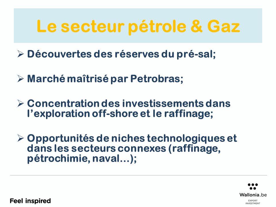 Le secteur pétrole & Gaz Découvertes des réserves du pré-sal; Marché maîtrisé par Petrobras; Concentration des investissements dans lexploration off-shore et le raffinage; Opportunités de niches technologiques et dans les secteurs connexes (raffinage, pétrochimie, naval…);
