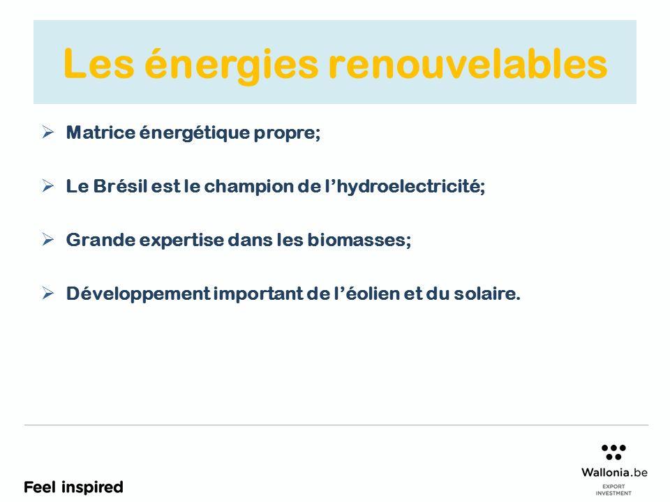 Les énergies renouvelables Matrice énergétique propre; Le Brésil est le champion de lhydroelectricité; Grande expertise dans les biomasses; Développement important de léolien et du solaire.