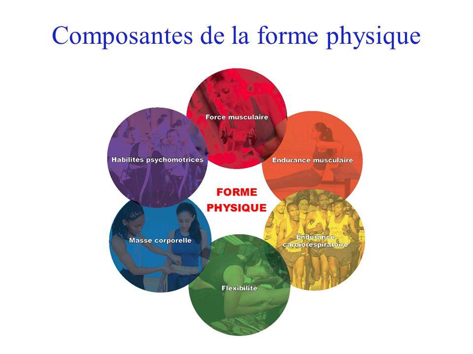 Composantes de la forme physique FORMEPHYSIQUE