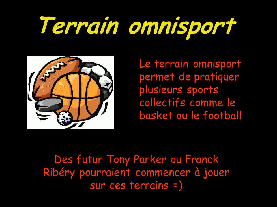 Terrain omnisport Le terrain omnisport permet de pratiquer plusieurs sports collectifs comme le basket ou le football Des futur Tony Parker ou Franck Ribéry pourraient commencer à jouer sur ces terrains =)