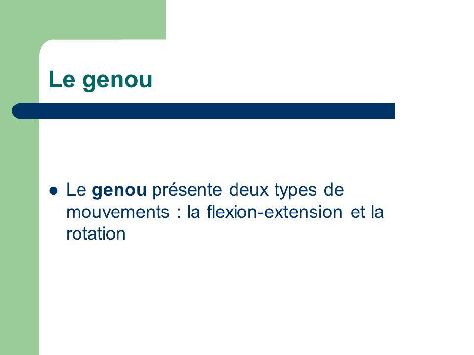 Le genou présente deux types de mouvements : la flexion-extension et la rotation