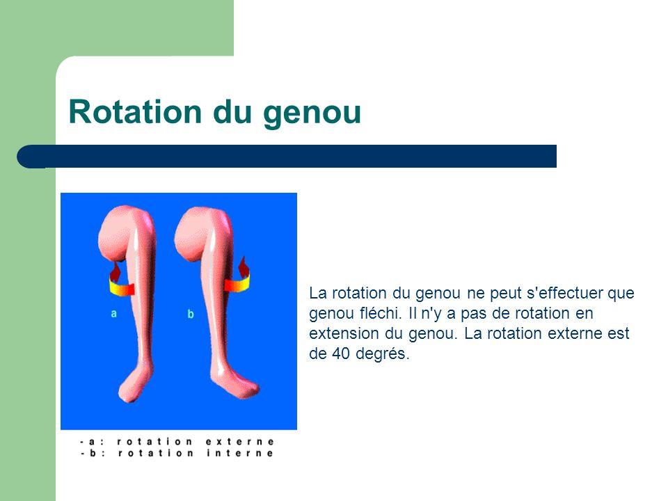 Rotation du genou La rotation du genou ne peut s'effectuer que genou fléchi. Il n'y a pas de rotation en extension du genou. La rotation externe est d