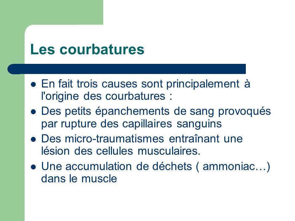 Les courbatures En fait trois causes sont principalement à l'origine des courbatures : Des petits épanchements de sang provoqués par rupture des capil
