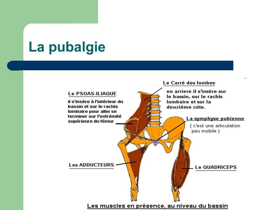 La pubalgie
