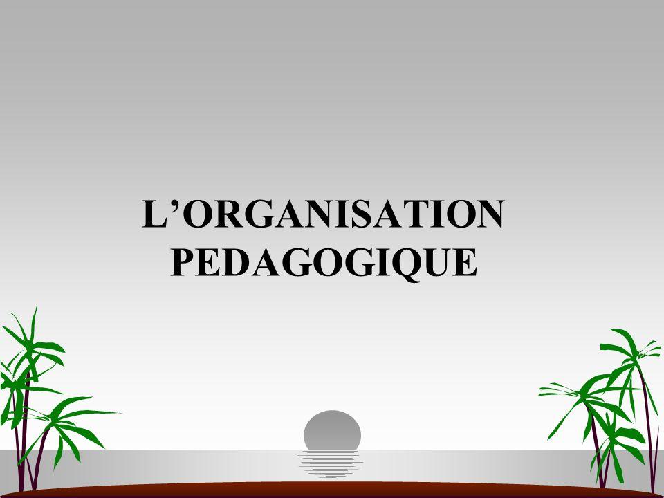 LORGANISATION PEDAGOGIQUE