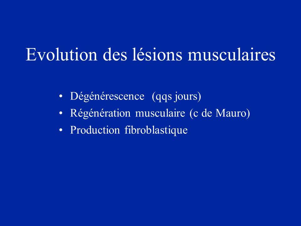 Evolution des lésions musculaires Dégénérescence (qqs jours) Régénération musculaire (c de Mauro) Production fibroblastique