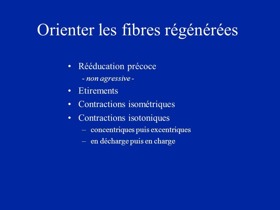 Orienter les fibres régénérées Rééducation précoce - non agressive - Etirements Contractions isométriques Contractions isotoniques –concentriques puis