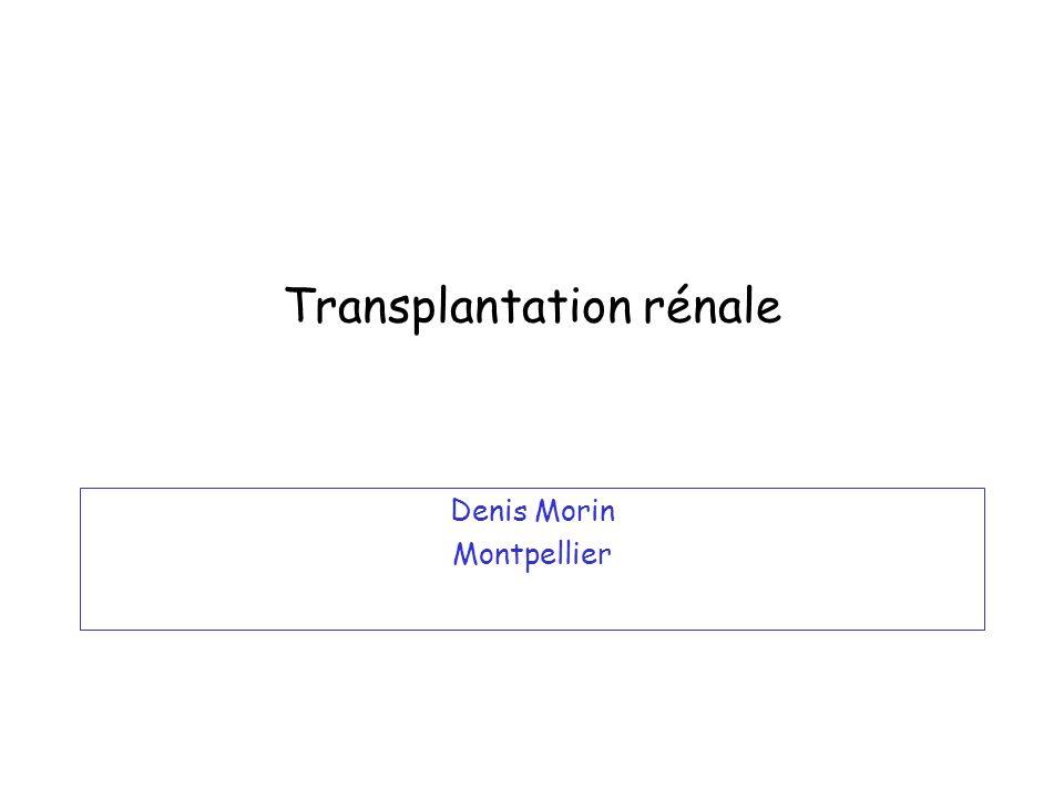 Transplantation rénale Denis Morin Montpellier