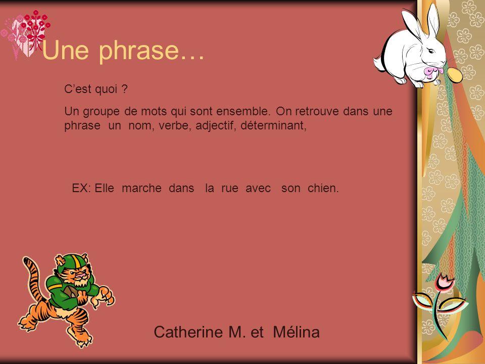 Une leçon de grammaire Travail fait par les élèves de 3e année Année 2006-2007