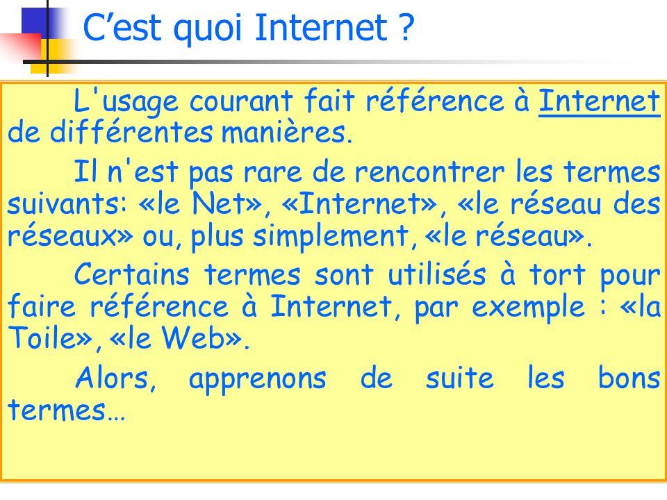 L'usage courant fait référence à Internet de différentes manières. Il n'est pas rare de rencontrer les termes suivants: «le Net», «Internet», «le rése