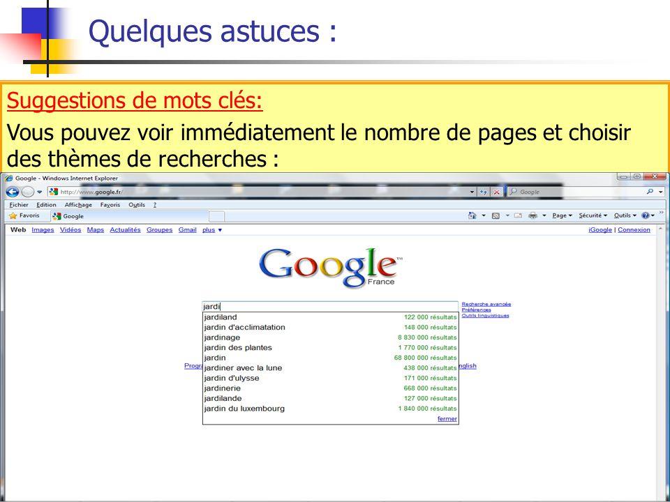 Quelques astuces : Suggestions de mots clés: Vous pouvez voir immédiatement le nombre de pages et choisir des thèmes de recherches : Suggestions de mo