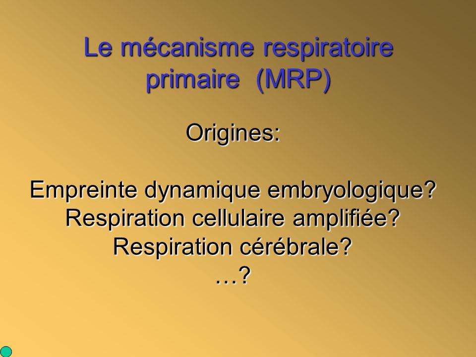 Le mécanisme respiratoire primaire (MRP) Origines: Empreinte dynamique embryologique? Respiration cellulaire amplifiée? Respiration cérébrale? …?