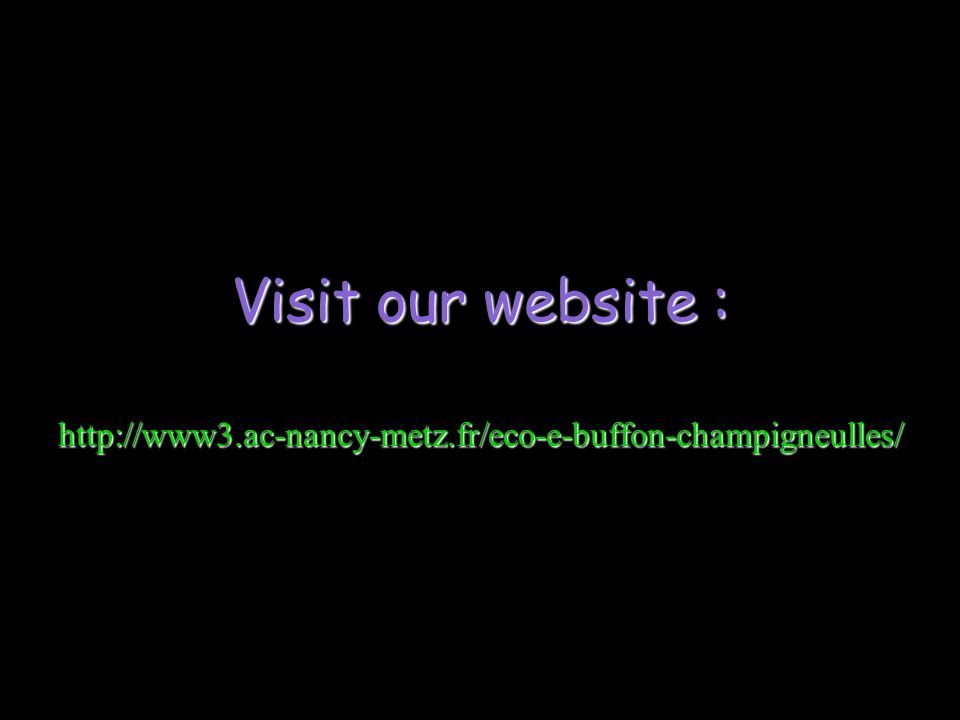 Visit our website : http://www3.ac-nancy-metz.fr/eco-e-buffon-champigneulles/