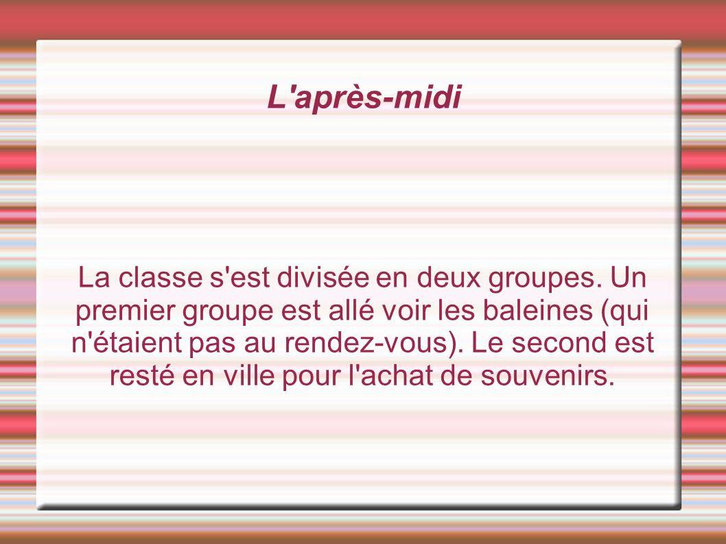 L après-midi La classe s est divisée en deux groupes.