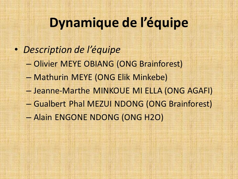 Dynamique de léquipe Description de léquipe – Olivier MEYE OBIANG (ONG Brainforest) – Mathurin MEYE (ONG Elik Minkebe) – Jeanne-Marthe MINKOUE MI ELLA
