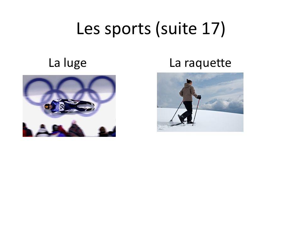 Les sports (suite 17) La lugeLa raquette