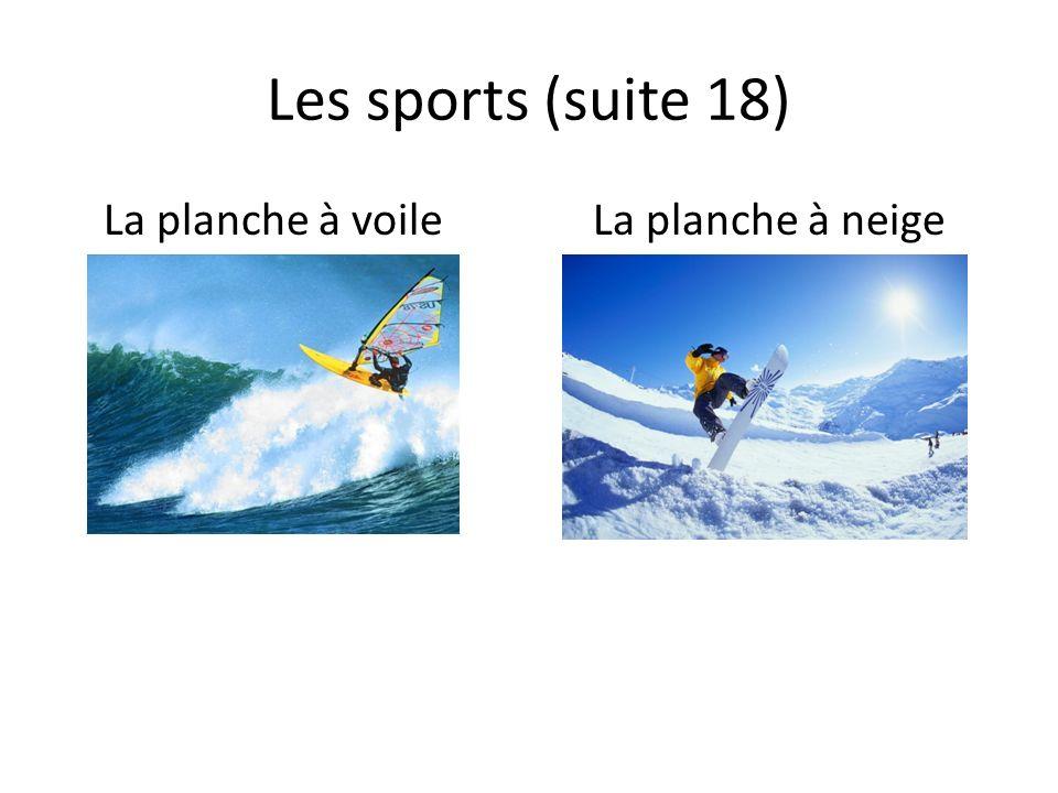 Les sports (suite 18) La planche à voileLa planche à neige