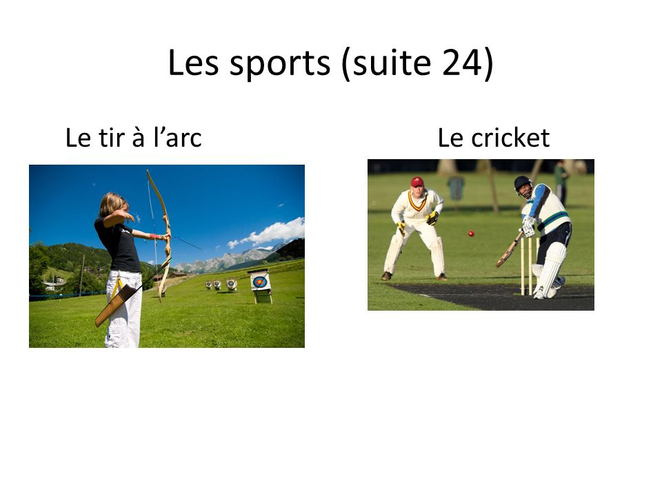 Les sports (suite 24) Le tir à larcLe cricket