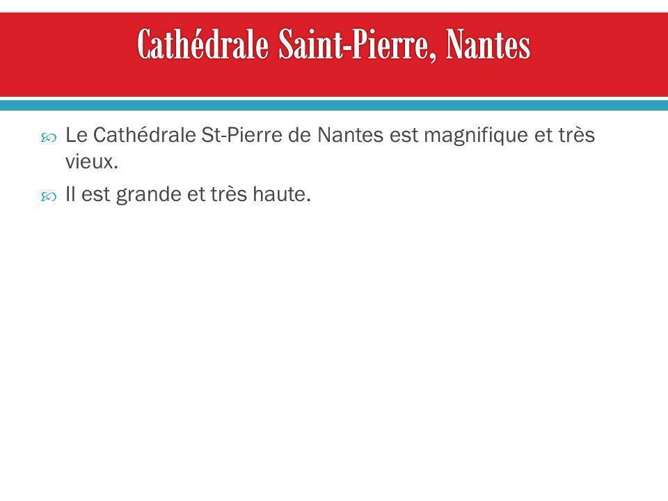 Le Cathédrale St-Pierre de Nantes est magnifique et très vieux. Il est grande et très haute.