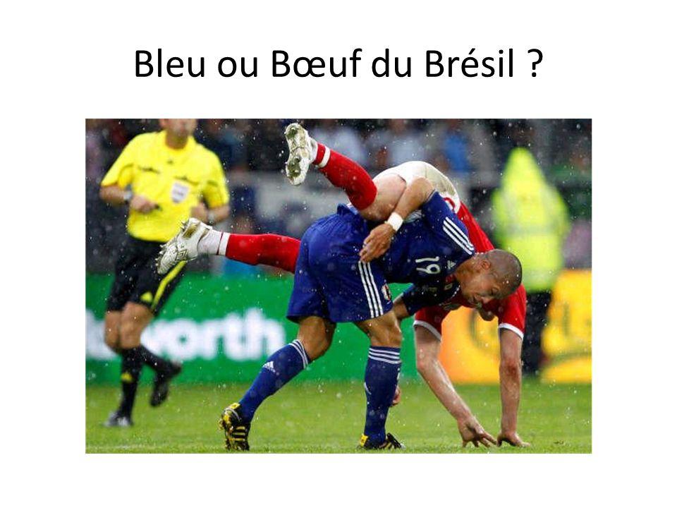 Bleu ou Bœuf du Brésil ?