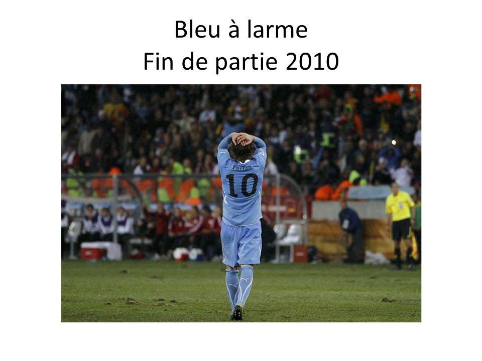 Bleu à larme Fin de partie 2010