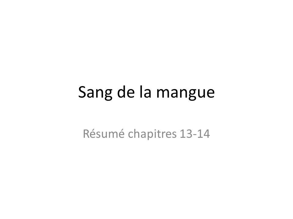 Sang de la mangue Résumé chapitres 13-14