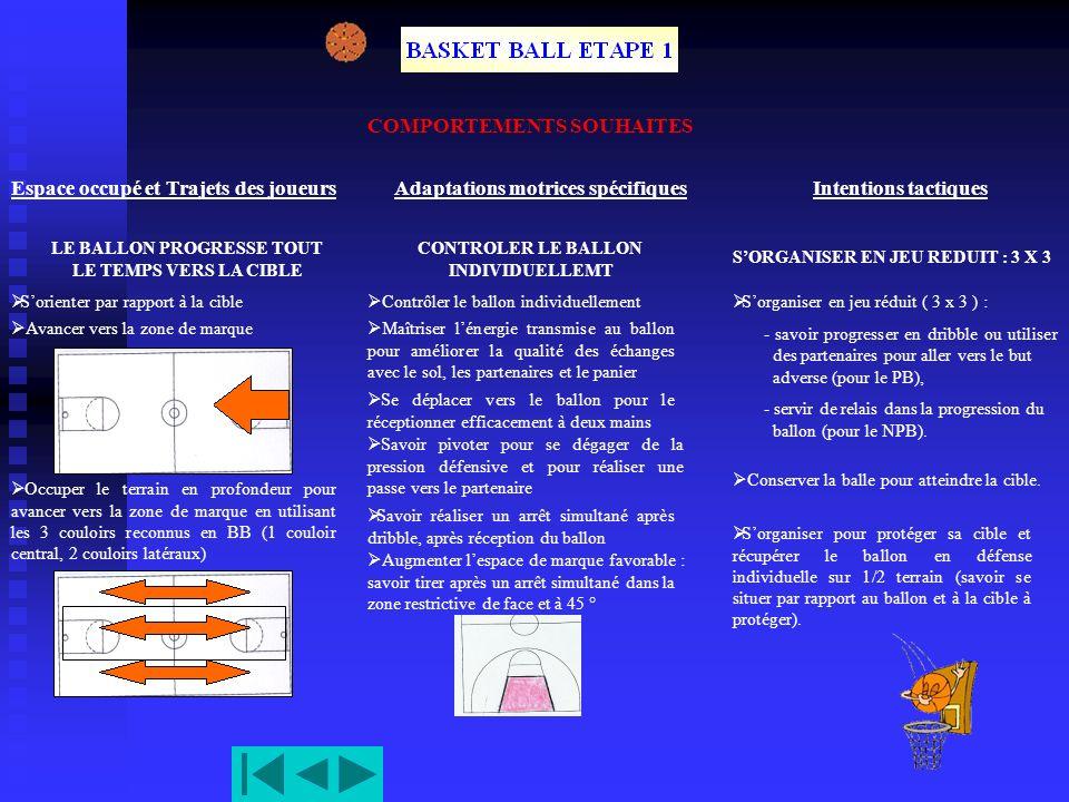 BASKET BALL ETAPE 2 COMPORTEMENTS OBSERVES Espace occupé et Trajets des joueurs LE BALLON PROGRESSE TOUT LE TEMPS VERS LA CIBLE Espace orienté vers la cible.
