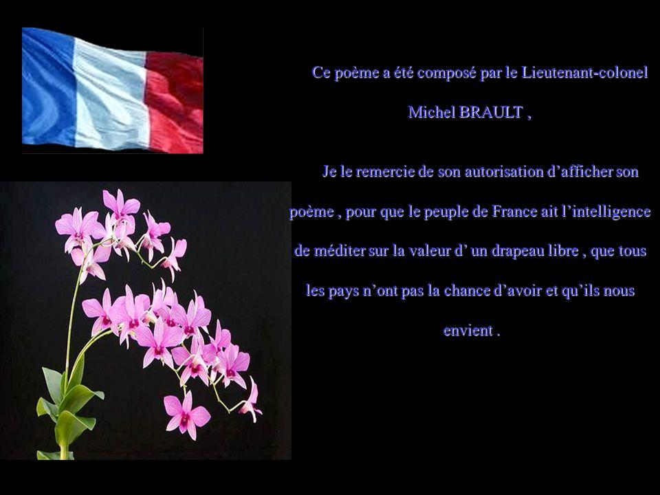 Ce soir je regrettais de porter ces couleurs, Car une part de la France est morte dans mes pleurs. Quand mon pays me laisse ainsi succomber, seul, Je
