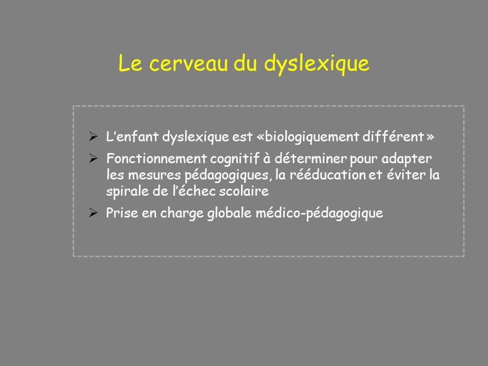 Lenfant dyslexique est «biologiquement différent » Fonctionnement cognitif à déterminer pour adapter les mesures pédagogiques, la rééducation et évite