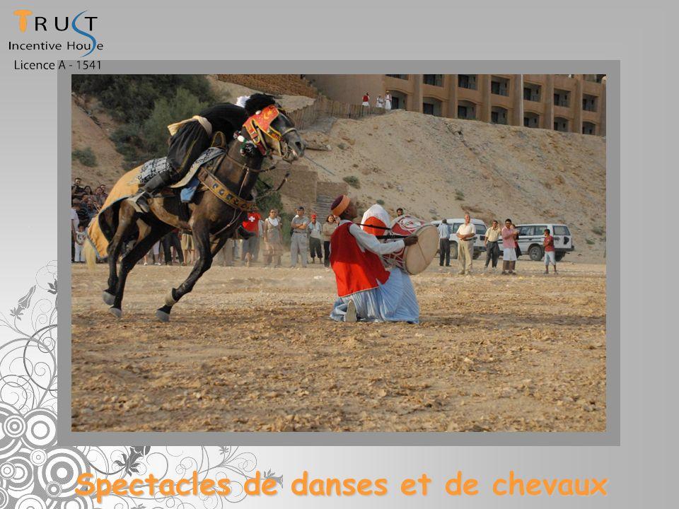 Spectacles de danses et de chevaux